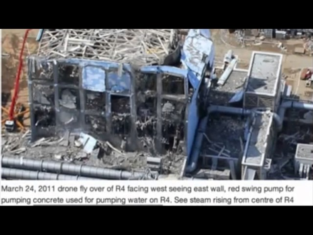Fukushima Reactor 4,the real truth…