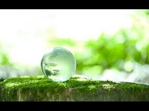 【イルミナティ】緑と愛にあふれた地球を目指して【New World Order】  『新・霊界物語 第八十五話』