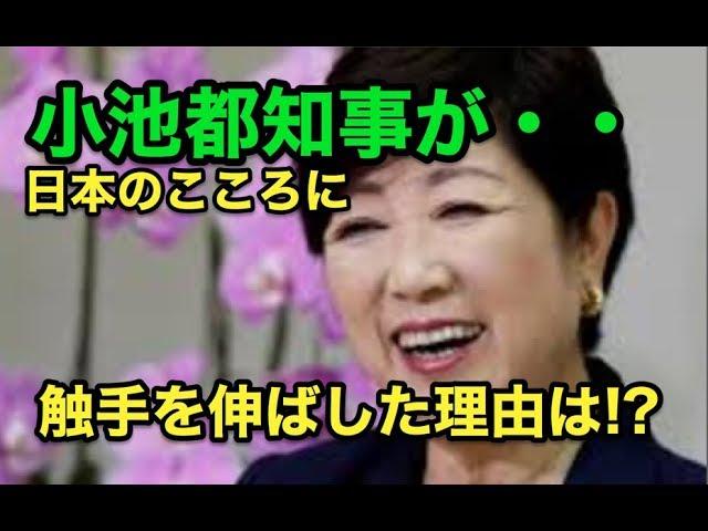 小池都知事が・・日本のこころに・・触手を伸ばした理由は!?