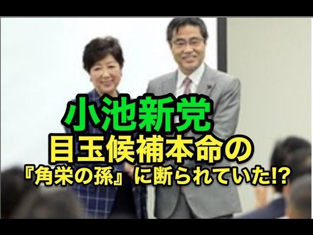 小池新党・・目玉候補本命の『角栄の孫』に断られていた!?