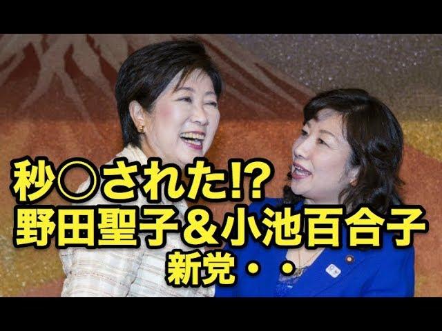 秒○された・・!?野田聖子&小池百合子新党・・